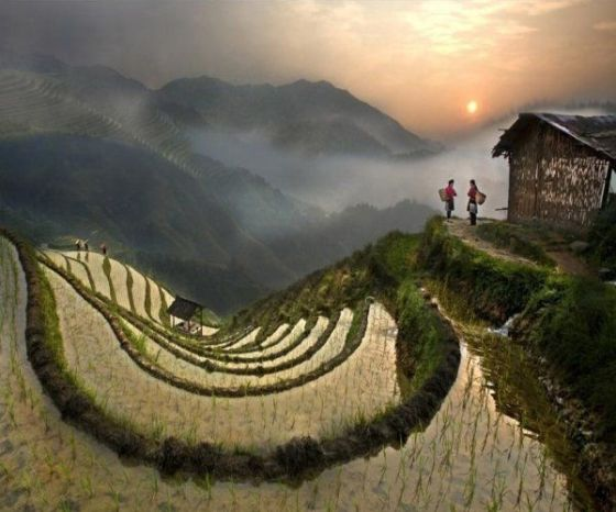 26f9cf44fd5b3237d638a146fb03fdcb-banaue-rice-terraces-phillipines
