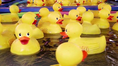 stock-footage-yellow-rubber-ducks-carnival-game-close-up